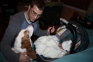 The day we brought Jack home: Lilu meets Jack